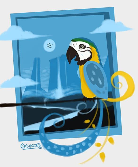 macaw+blue[1]
