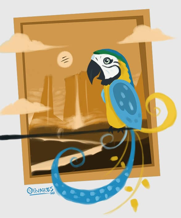 macaw+orange[1]